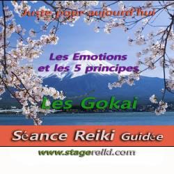 Séance Reiki les Gokai et les émotions 1