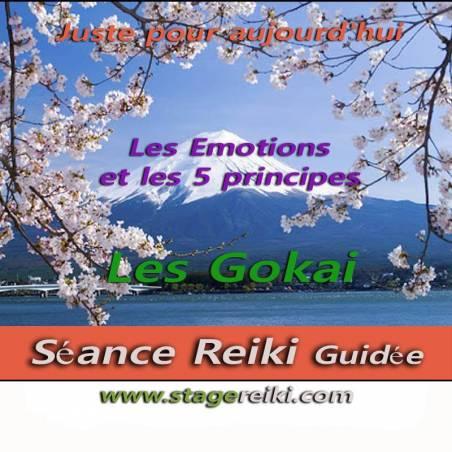 Découvrir les gokai et les organes associés aux émotions