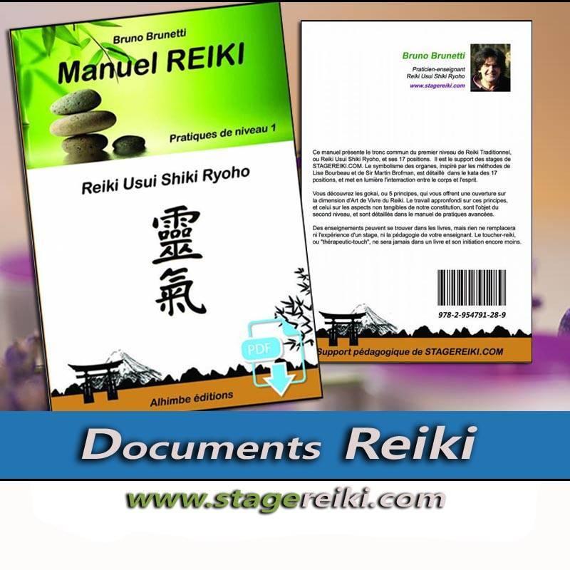 Manuel de REIKI 1 Ebook