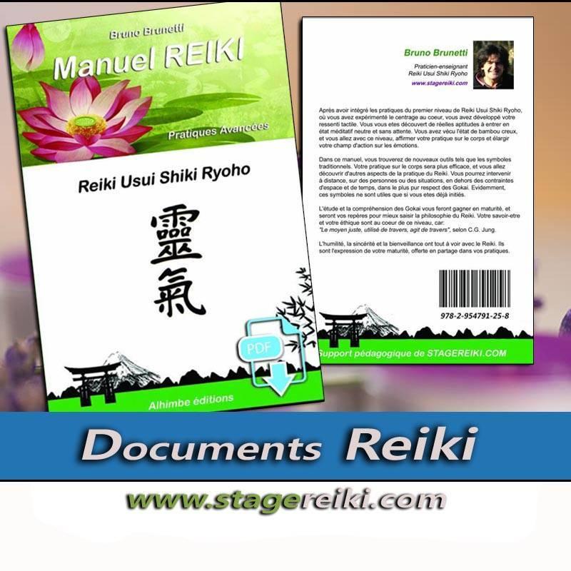 Manuel de REIKI 2 Ebook
